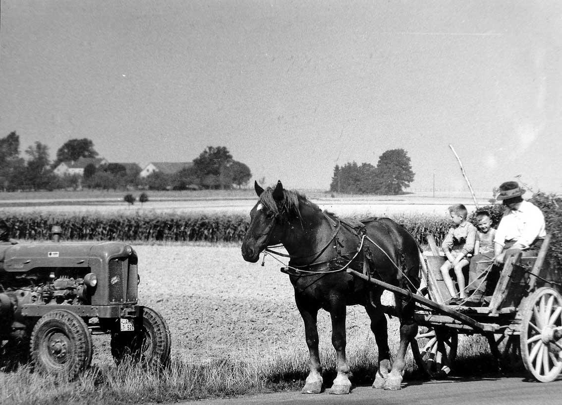 Treffen der Generationen / Im Waldhausener Feld begegnen sich zwei Generationen, ein einspänniges Fuhrwerk trifft auf einen Vertreter der aufkommenden Motorisierung der Landwirtschaft in der Zeit des Wirtschaftswunders, einen Fordson Major Traktor. Diese Schlepper der 1960er Jahre waren überwiegend mit Dieselmotoren ausgestattet, später auch mit Zapfwellenantrieb. Die Flächenleistung beim Pflügen, beim Mähen und bei der Aussaat erhöhte sich um ein Vielfaches. Diese Mechanisierung war ein wichtiger Schritt zur heutigen hocheffizienten Landwirtschaft.