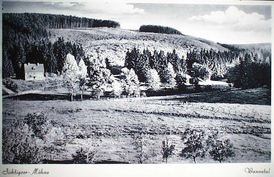Bild 0056: Wannetal und Scharpenseel von den Berggärten aus / Der Narrenberg ist gerade wieder aufgeforstet; Kahlschlag durch die Engländer nach dem II. Weltkrieg.