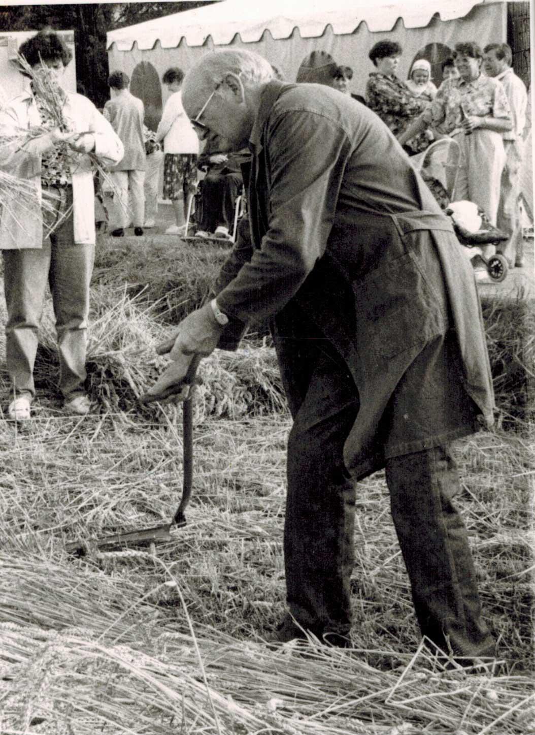 Waldhausens 700 - Jahrfeier 1993 / Waldhausens Altbürgermeister Heinrich Jäger aus dem Ortsteil Echelnpöten demonstriert das Getreidemähen mit einer Sense.