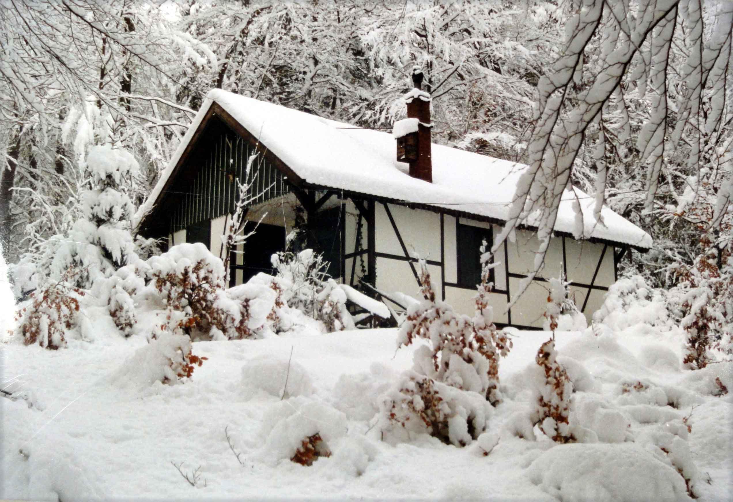 Bild 6396: Jagdhütte im Winterwald südlich von Sichtigvor
