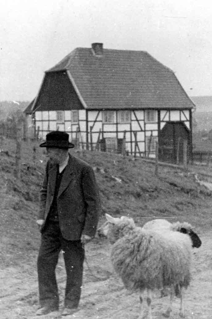 Ein Herr bei der Schafdrift - Vor dem Haus von Fritz Josephs (heute Familie Raulf) am Ende der Römerstraße führt ein sonntäglich gekleideter Mann seine beiden Schafe auf dem damals, um ca. 1950, noch nicht ausgebauten Weg nach dem Erlenbruch. Dort fand sich viel Grünfutter für die Tiere. Der Name des Herrn ist nicht bekannt.